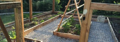 Vegetable Garden - long narrow