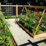 Vegetable Garden from Eve Mauger Designs